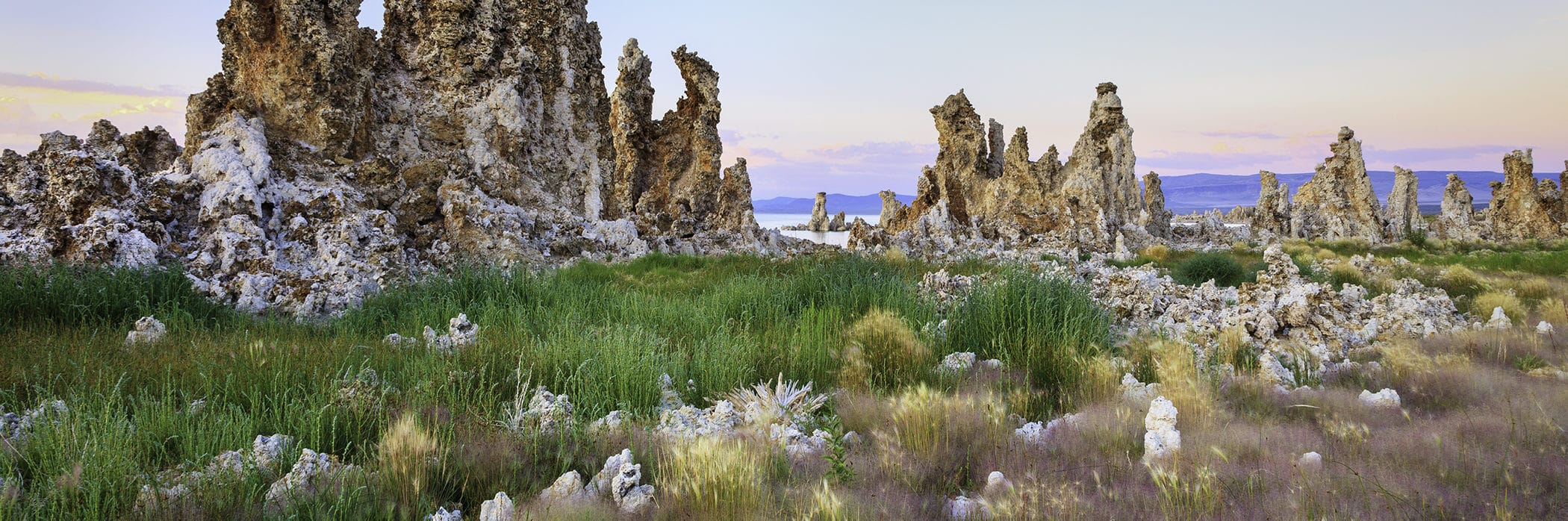 Tall craggy tufa spires tower over bright green, yellow, and pink grasses with a clear sky and soft sunset hues.