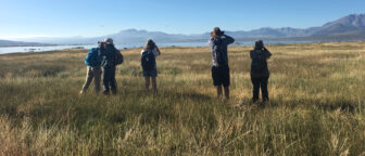 Five people standing in a grassy field adjacent to Mono Lake looking out toward the lake with binoculars at birds flying in the sky and the Sierra Nevada in the distance.